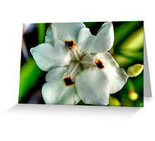 HDR Flowers Greeting Card