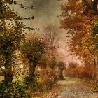 Falling leaves by Carina514