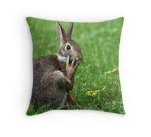 Worried Wabbit Or Bemused Bunny ? Throw Pillow