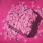 Heart Shaped Box by Denise Abé