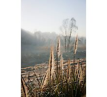 The Reeds Family  Photographic Print