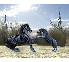 White Tiger Horse Photographic Print