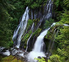 Panther Creek Falls II by Tula Top