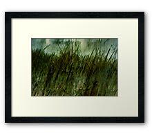 Every Blade of Grass Framed Print