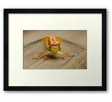 Who Will Blink First? Framed Print