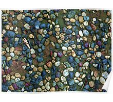 Textures - Path with coloured pebbles and mould Poster
