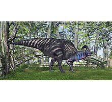 Parasaurolophus Photographic Print