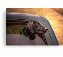 waiting for master jack Canvas Print