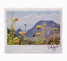 Desert Flowers Polaroid One Piece - Long Sleeve