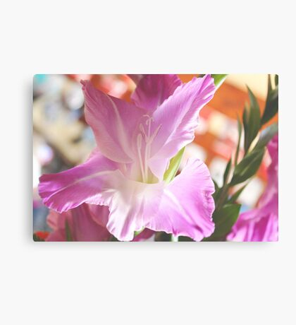 Just the right amount of sun... Canvas Print