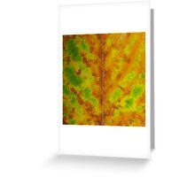 Leaf, Turning Greeting Card