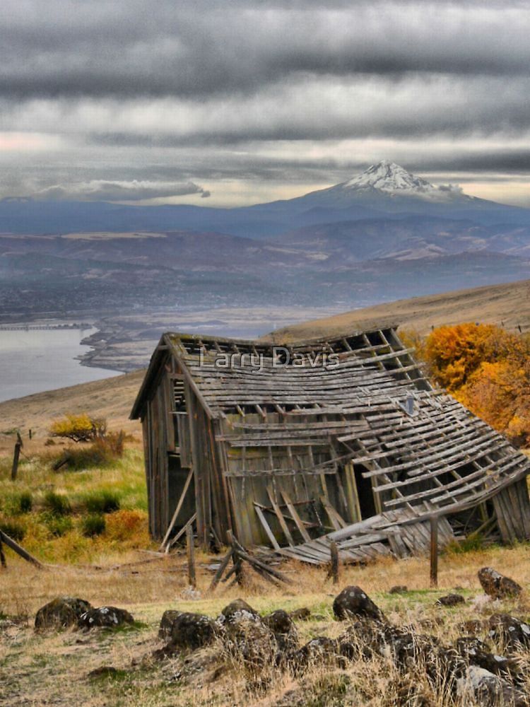 The Dalles Mountain Road  ( 5 ) by Larry Lingard-Davis