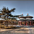 Double Ring Pavilion  by Psycoticduck