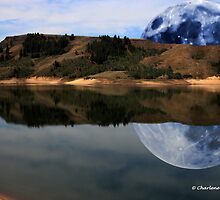 MOON REFLECTION by Charlene Aycock