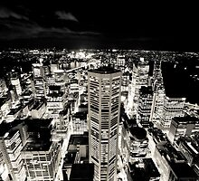 Sydney Lights (Black and White) by baddoggy