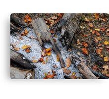 Autumn Ashes Canvas Print