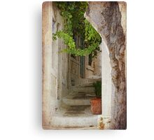 greek steps Canvas Print