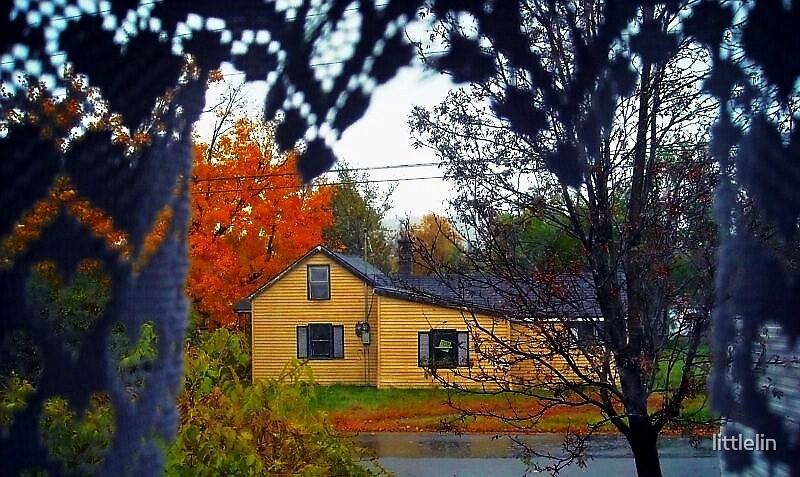 Out the Window by littlelin