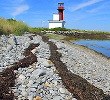 Seaweed Path to the Lighthouse by RevJoc