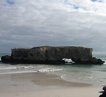 The Rock by Rocksygal52