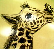 Baby Giraffe with Butterfly by coppertrees
