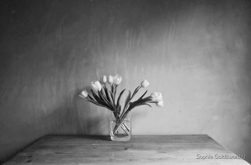 Fan of flowers, b/w by Sophie Goldsworthy