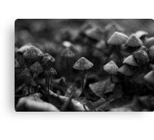 Mushroom army Canvas Print