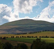 Humbleton Hill Northumberland UK by James  Key