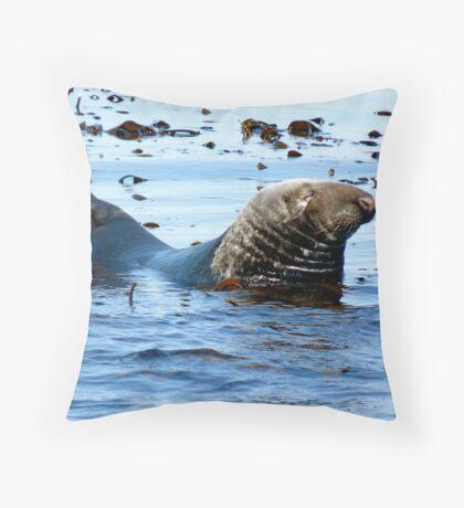 Sea Lion, Farne Islands - Northumberland Throw Pillow