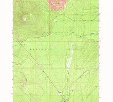 USGS Topo Map Oregon Odell Butte 280961 1967 24000 by wetdryvac