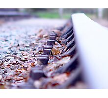 Leaves on the Line Photographic Print