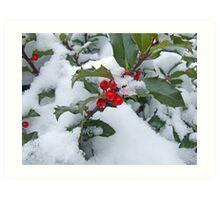 Snow Berry Art Print