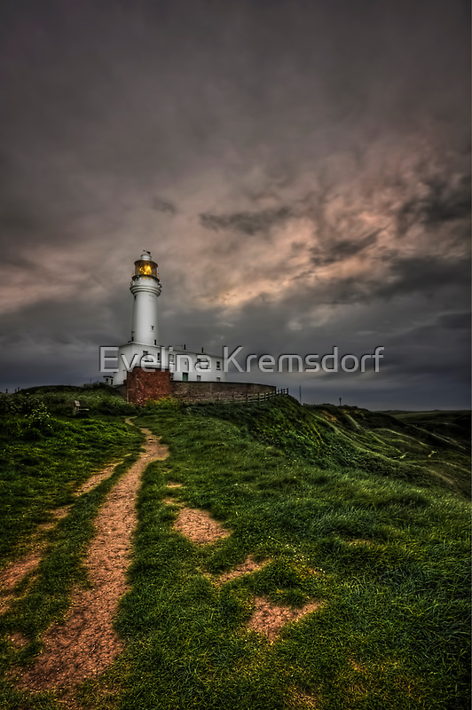 A Path To Enlightment by Evelina Kremsdorf