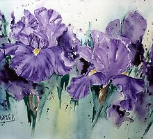 Wacky-Iris by Bev  Wells