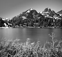 Picture Lake, Mount Baker Wilderness by Dan Mihai