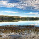 Nature's Reflection by Eddie Yerkish