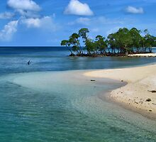 Tranquil Andaman (INDIA) by Amlan Sanyal