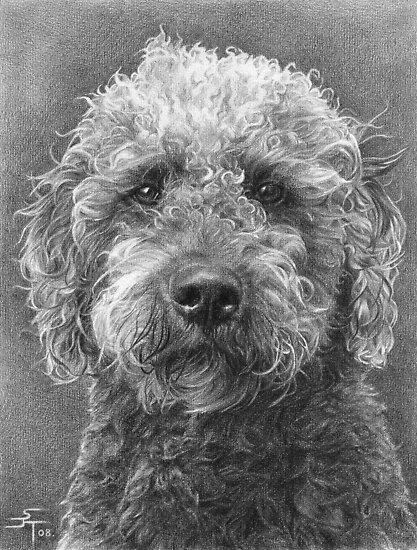 A4 Portrait Commission (Benny) by Sami Thorpe
