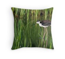 Black-Necked Stilt in Habitat Throw Pillow