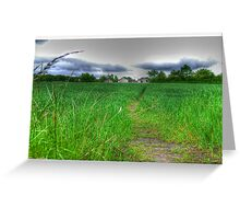 Path by Day Greeting Card