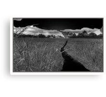 Path at Night Canvas Print
