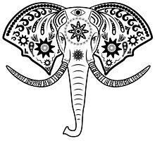 elephant head by kotliar