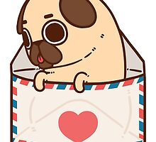 You've Got Mail by Puglie  Pug