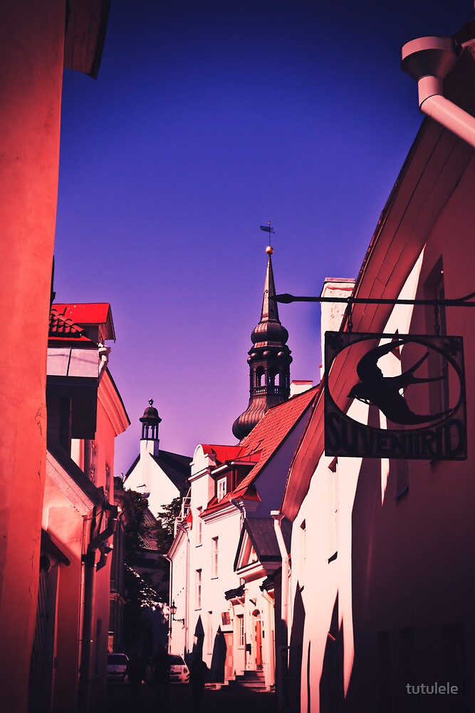 Old Town, Toompea. by tutulele