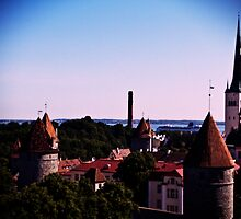 View From Toompea by tutulele