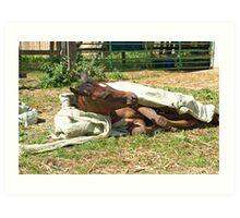 Natural horsemanship  3 Art Print