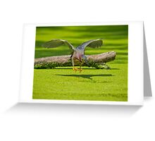 Aerial Assault Greeting Card