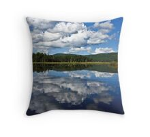 Little Safford Lake Throw Pillow