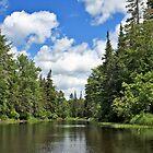 Moose River by Benjamin Young