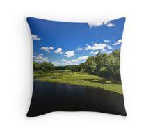Moose River Throw Pillow